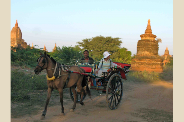Explore Bagan by horsecart