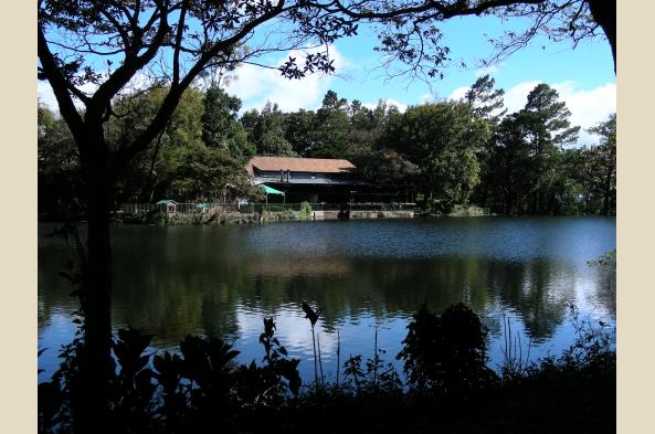 Selva Negra Ecolodge