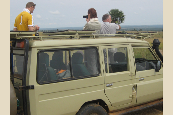 Enjoy a walk -- or a game drive -- in search of wildlife