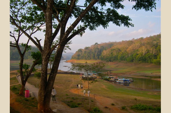 Cruise Lake Periyar and look for wildlife