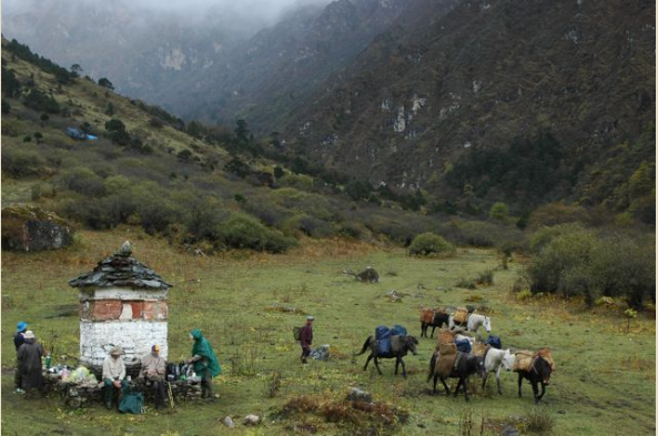 You'll see the summer homes of yak herders high in the mountains