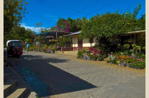 In Santa Catarina, one of the Pueblos Blancos, note the charming small home-based nurseries.