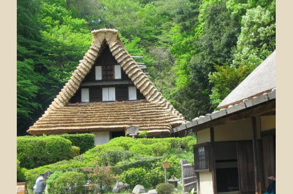 See a UNESCO-designated home in Shirakawa