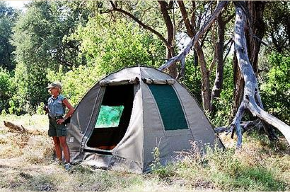Experience the great outdoors with tent camping