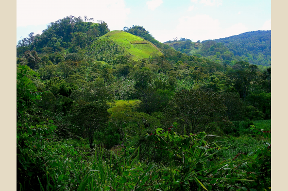 Enjoy the cool green vistas of the Matagalpa region