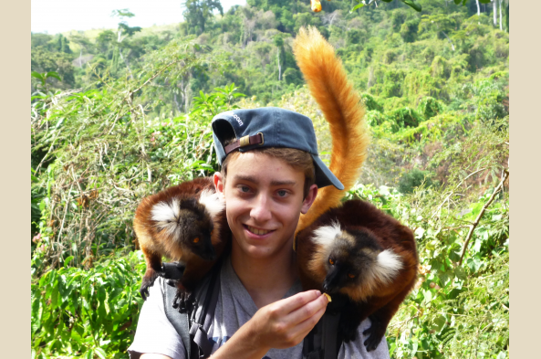 Friendly black lemurs on Nosy Komba.