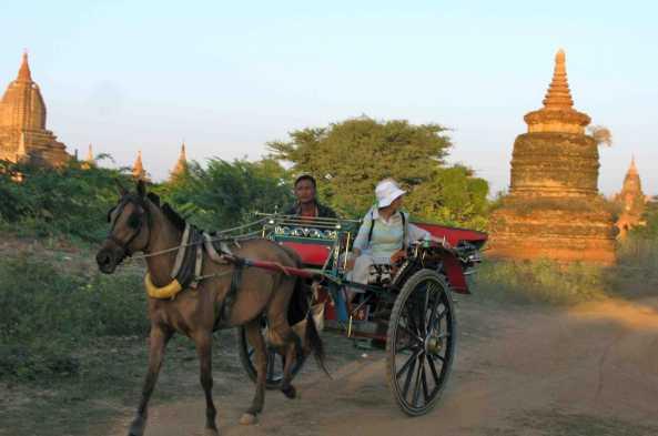 Explore Bagan by horsecart