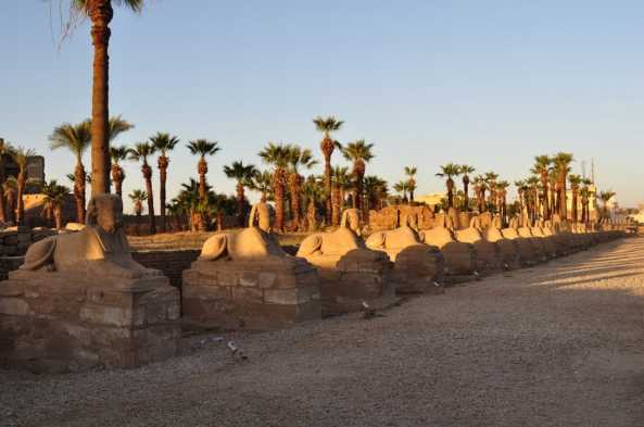 Luxor's Avenue of Sphinxes between Luxor and Karnak Temples