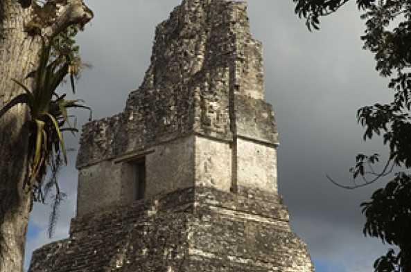 Tikal will thrill kids & adults alike!