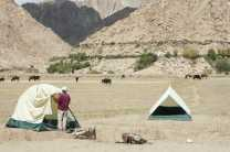 Camp in the wild near the village of Hemis