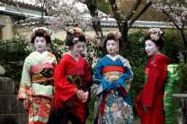 Search for geisha in Kyoto's Gion district